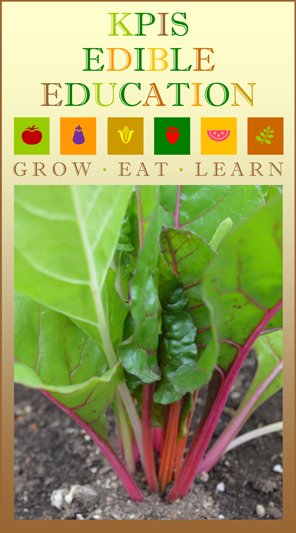 INTERNATIONAL PRESCHOOL TOKYO EDIBLE EDUCATION